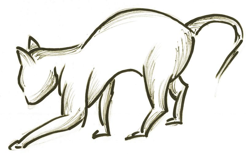 Katze_DG_V-1-0